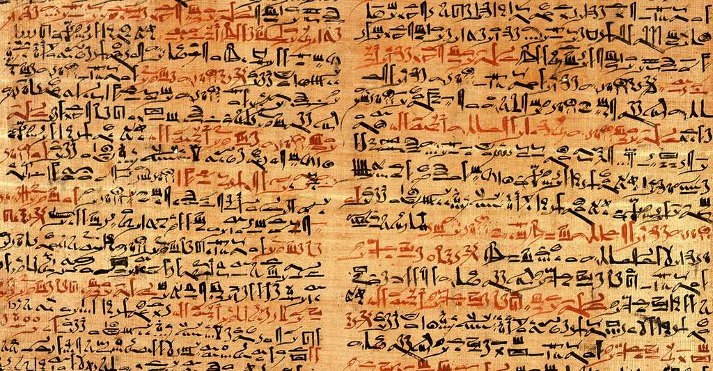 Fragment du papyrus chirurgical Edwin Smith traitant des traumatismes de la face. © Grook Da Oger, Wikimedia commons, DP