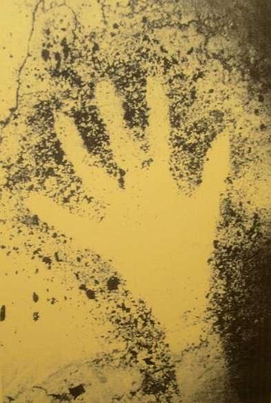 Cette empreinte de main (ici une reproduction) a été découverte dans la grotte Cosquer, près de Marseille. Elle aurait été peinte voici 27.000 ans, mais par un homme ou une femme ? Il y a plus de deux chances sur trois que la seconde possibilité soit la bonne. © SiefkinDR, Wikimedia Commons, cc by sa 3.0