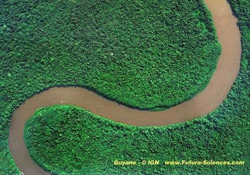 Je pars en Amazonie