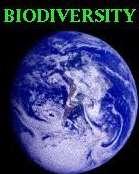 La 8ième Conférence des parties à la convention sur la biodiversité s'est achevée le 31 mars Les avis sont partagés...