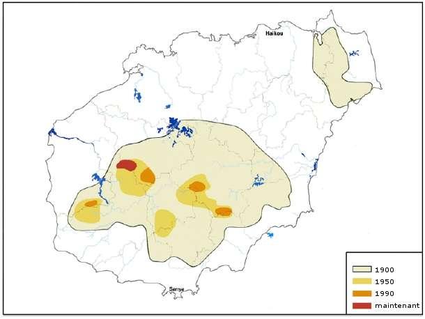 Aire de répartition du gibbon de Hainan, de 1900 à aujourd'hui. © Kadoorie Farm & Botanic Garden, 2005