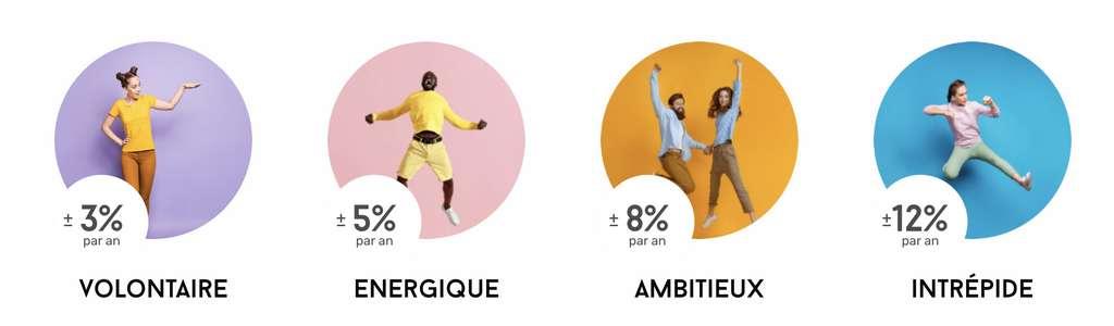 Voici quatre profils d'investisseurs proposés. © Mon Petit Placement