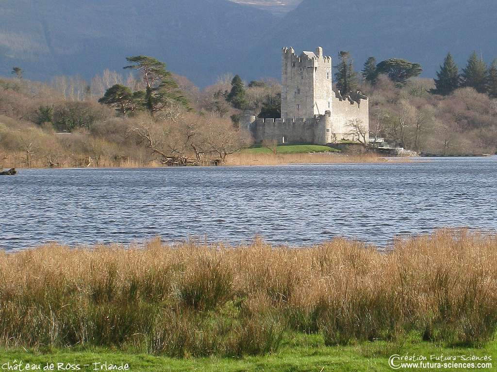 Château en Irlande