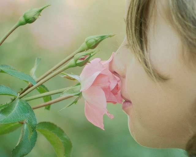 Certains souvenirs olfactifs peuvent rester gravés à jamais dans notre mémoire. © Joe Penniston, Flickr, CC by-nc-nd 2.0