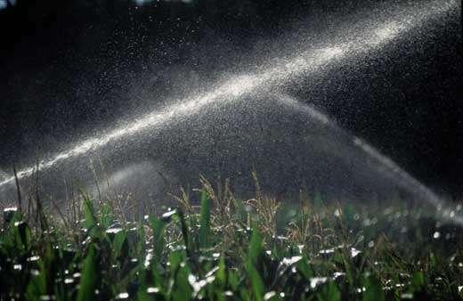 Utilisation abusive de la ressource © P.Affre / WWF