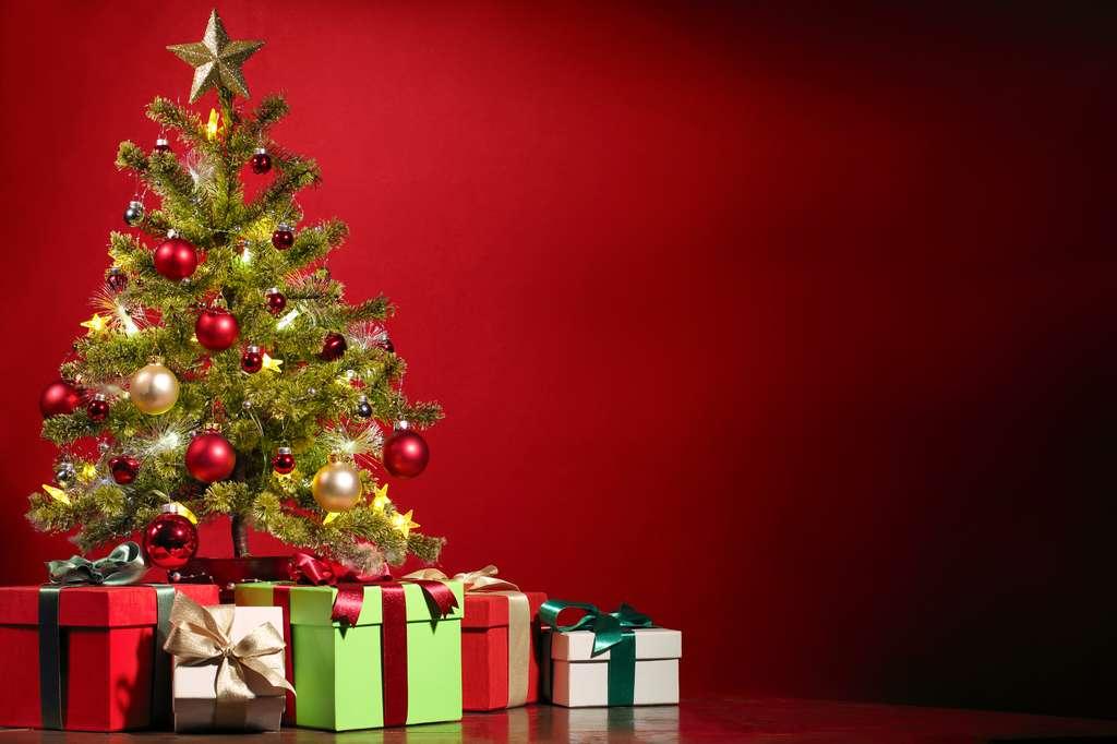 Cadeaux au pied du sapin de Noël. © Sofiaworld, Shutterstock