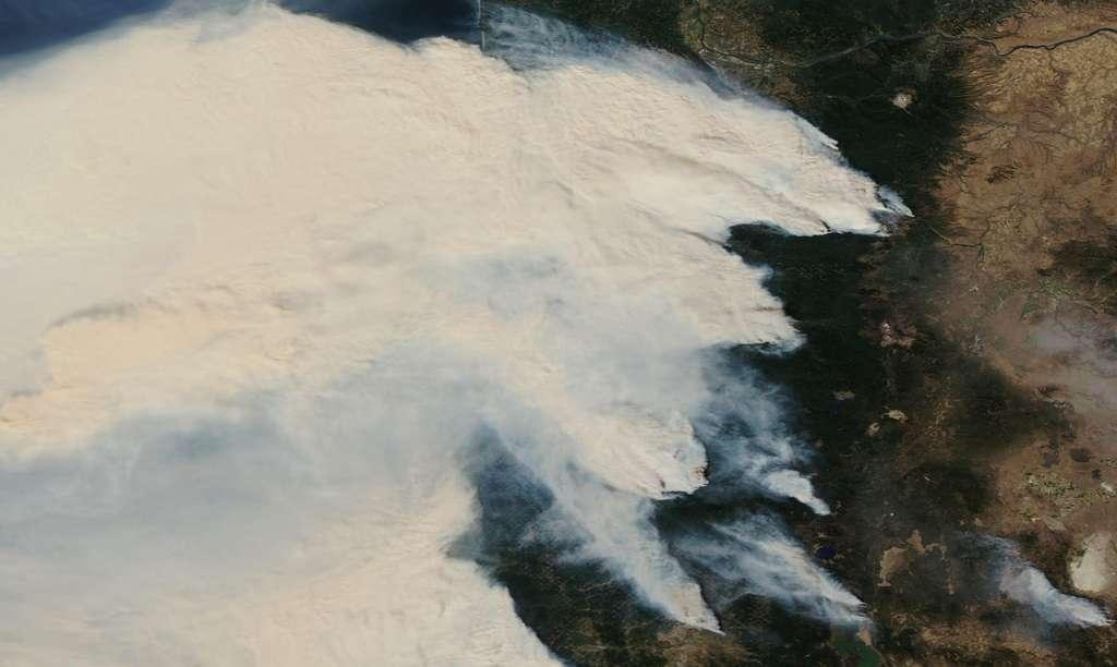 Sur cette image du satellite Aqua, les feux de forêt dans l'Oregon (États-Unis) attisé par des rafales à plus de 100 km/entre le 7 et le 8 septembre 2020. © Nasa Worldview