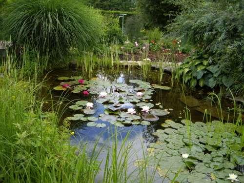 Les clés pour construire un bassin de jardin. Exemple de bassin réalisé par Gérard à Neuchatel Urtière (Doubs). © bassins-de-jardins-wifeo.com