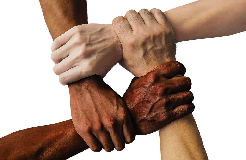 Le racisme, c'est quoi ? © Truthseeker, Pixabay, DP