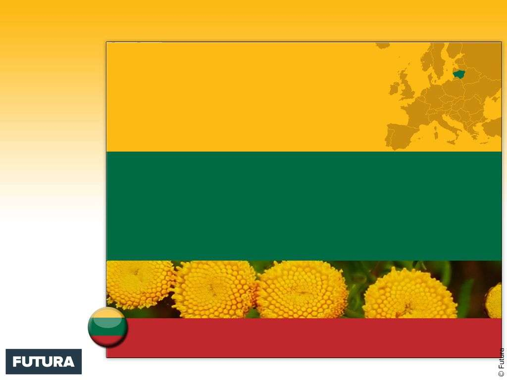 Drapeau : Lituanie