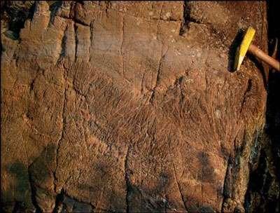 Komatiite © http://www.lescorpiondechair.ifrance.com