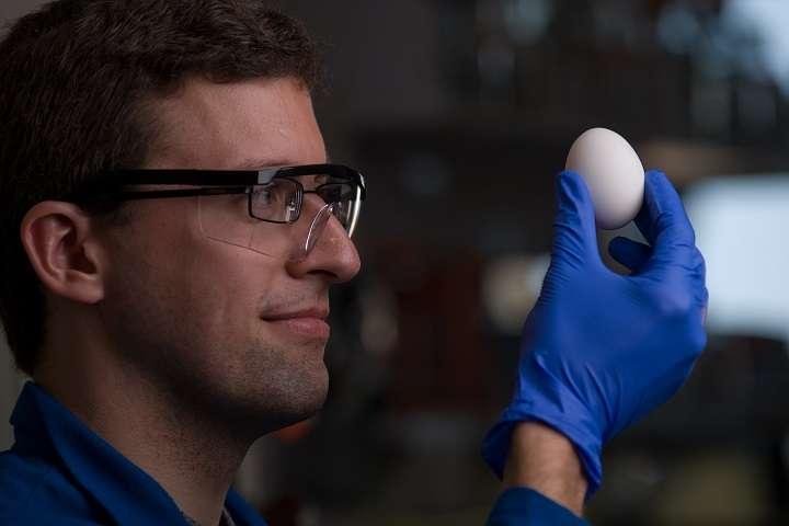 Le procédé développé par les chimistes pourrait permettre de réduire les coûts de production de certains médicaments. © Steve Zylius, UC Irvine