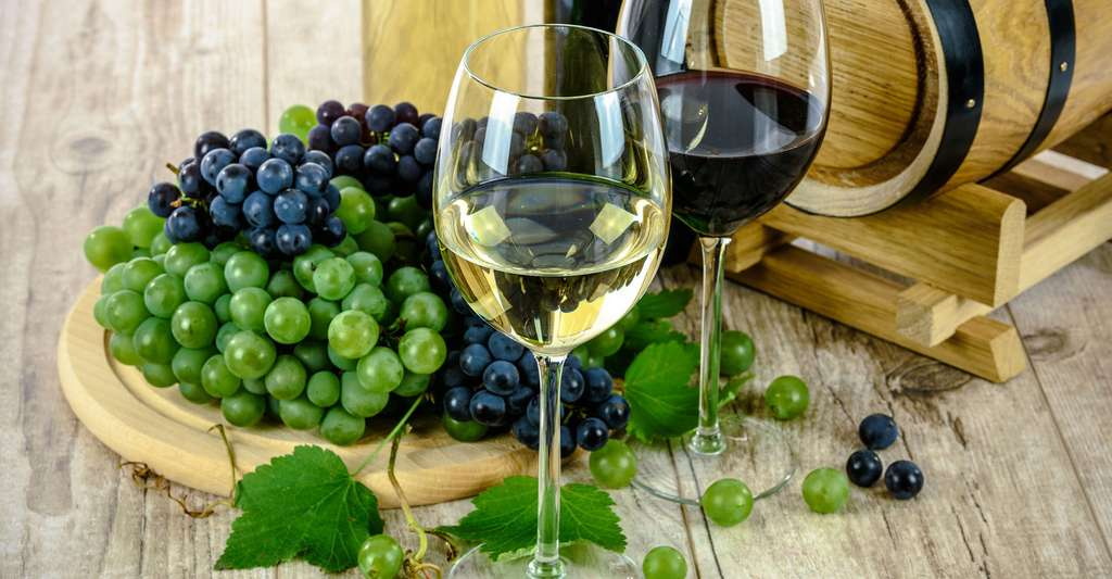 Vin rouge et vin blanc de Touraine. © Photo-Mix, Pixabay, DP