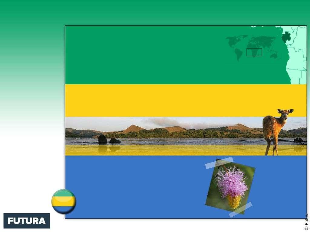 Drapeau : Gabon
