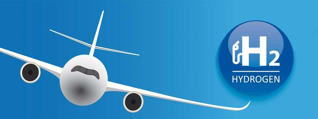 L'hydrogène, un carburant neutre en carbone pour l'aviation de demain. © Alexander Limbach, Adobe Stock