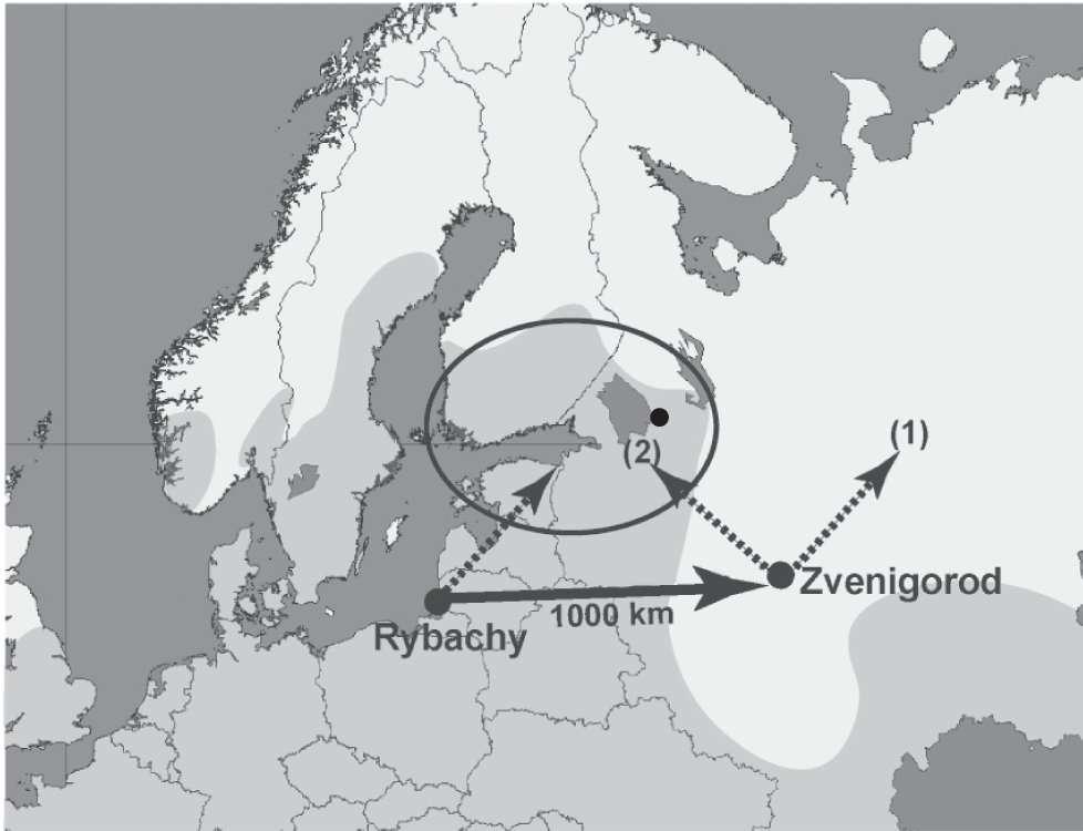 Naturellement, les rousserolles effarvattes qui vivent à Rybachy migrent en volant vers le nord-est, en direction de la zone entourée d'un cercle sur l'image. Celles lâchées à Zvenigorod se sont soit dirigées vers la même destination (flèche 2), soit dirigés au nord-est, comme à leur habitude (flèche 1). Ces dernières n'avaient pas de connexion neuronale entre leur bec et leur cerveau. © Kishkinev et al., 2013, Plos One