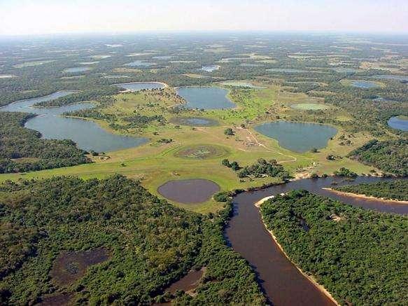Le Pantanal, la plus vaste zone humide du monde, s'étale autour du lit du fleuve Paraguay, au Brésil, en Bolivie et au Paraguay. Sa biodiversité est exceptionnelle. D'après une étude récente, les zones protégées – et encore, partiellement – ne représentent que 11 % de ce territoire de 1,1 million de km2, et 5 % sont inclus dans des parcs naturels. Le reste est soumis à l'extension des cultures, des élevages, des routes, des barrages et des mines. © world66, Wikipédia, cc by sa 1.0