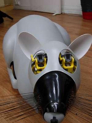 Le robot-rat