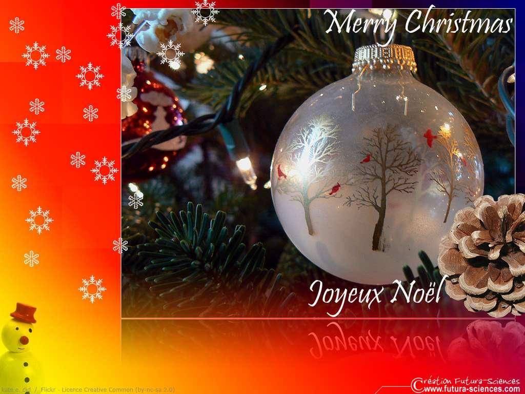 Merry Christmas Joyeux Noël