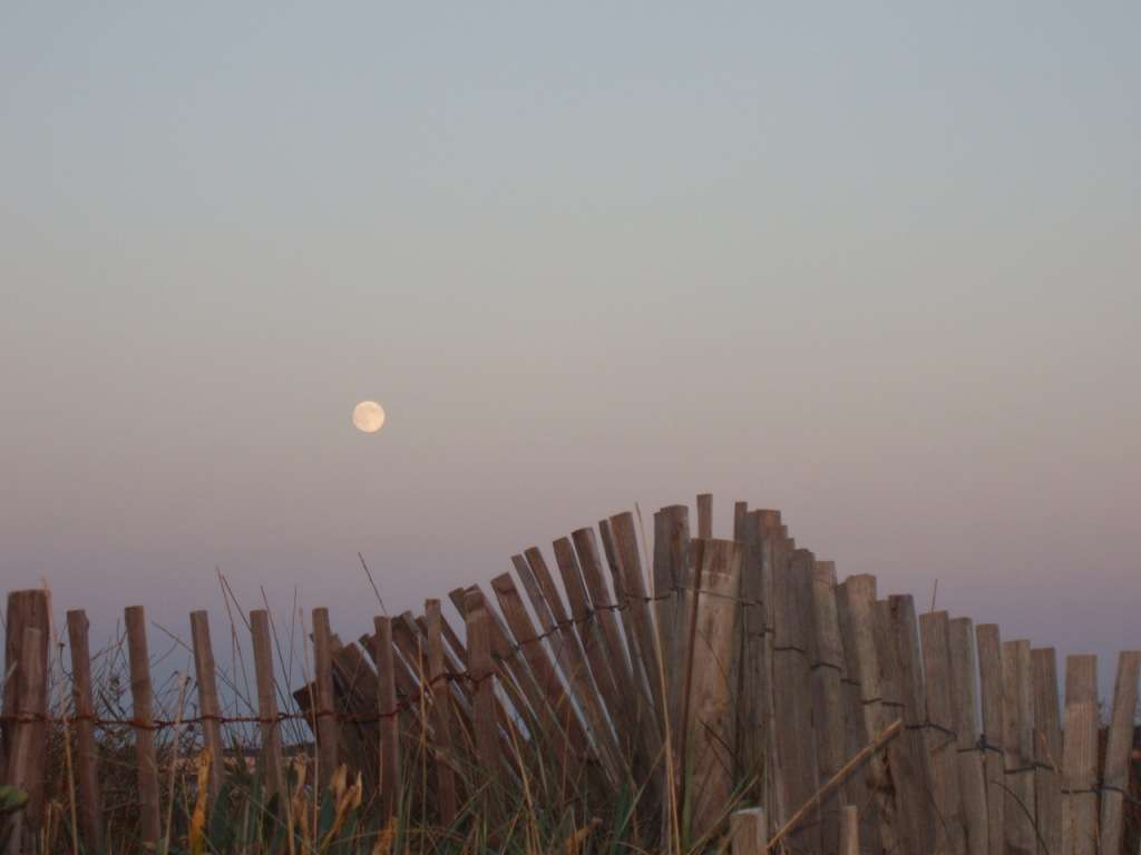 Lever de Pleine Lune sur la plage
