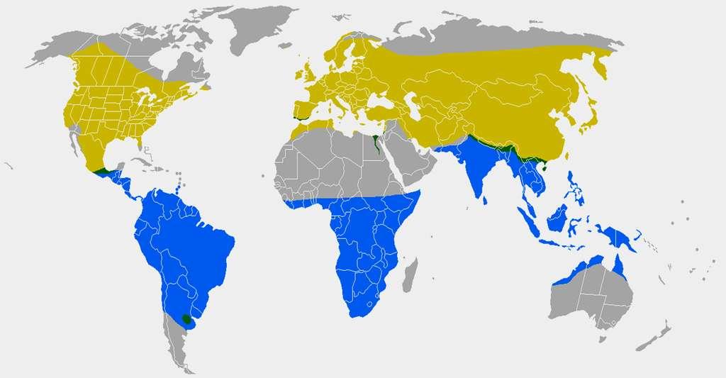 Jaune = Zones de nidification - Vert = Habitat permanent - Bleu Zones d'hivernage © MPF - Domaine public