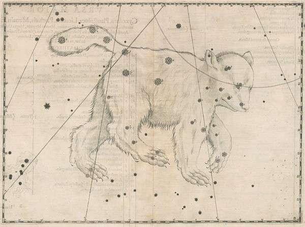 La constellation de la Grande Ourse représentée dans l'Uranometria de Johann Bayer. © DR