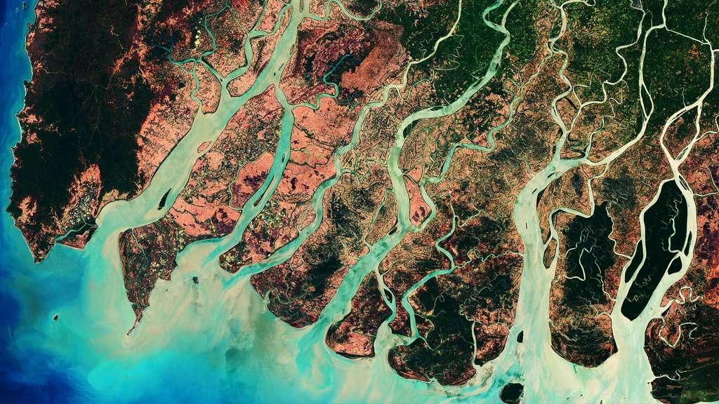 L'Irrawaddy et ses dauphins en Birmanie