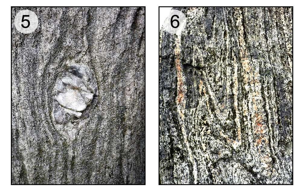 En 5, œil de gneiss. En 6, gneiss avec microplis. © Claire König, DR