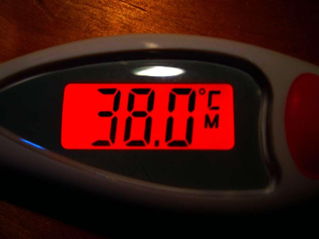 Il existe plusieurs façons de mesurer la température du corps. Si la température rectale est supérieure ou égale à 38 °C, les médecins considèrent que l'enfant a de la fièvre. © quapan, Flickr, cc by 2.0