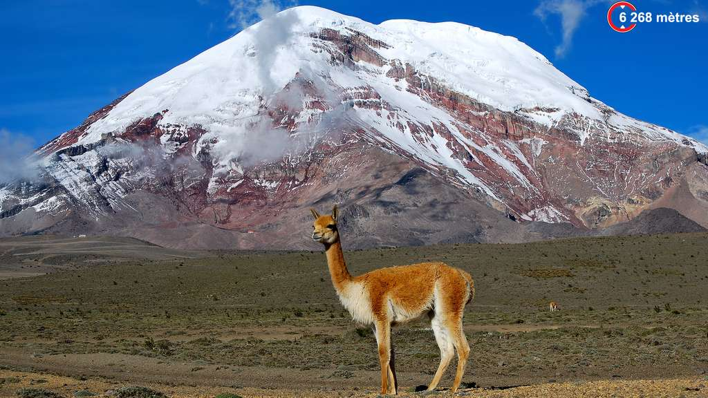 Chimborazo, l'emblème de l'Équateur