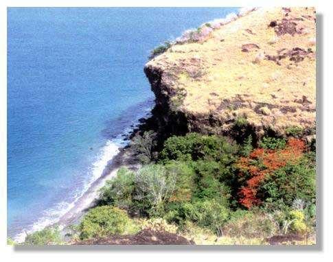 Figure 2 - Anse de la côte nord-ouest(d'après Brithmer, 1994)