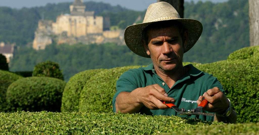 Les jardins de Marqueyssac, dans le département de la Dordogne, sont un lieu chargé d'histoire. Ici, un des jardiniers de Marqueyssac. © Laugery, Marqueyssac, DR