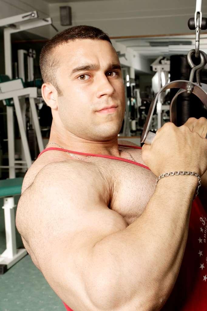 Pour jouer les gros bras, faut-il disposer des deux allèles C du gène Agt ? © Prometeus, StockFreeImages.com