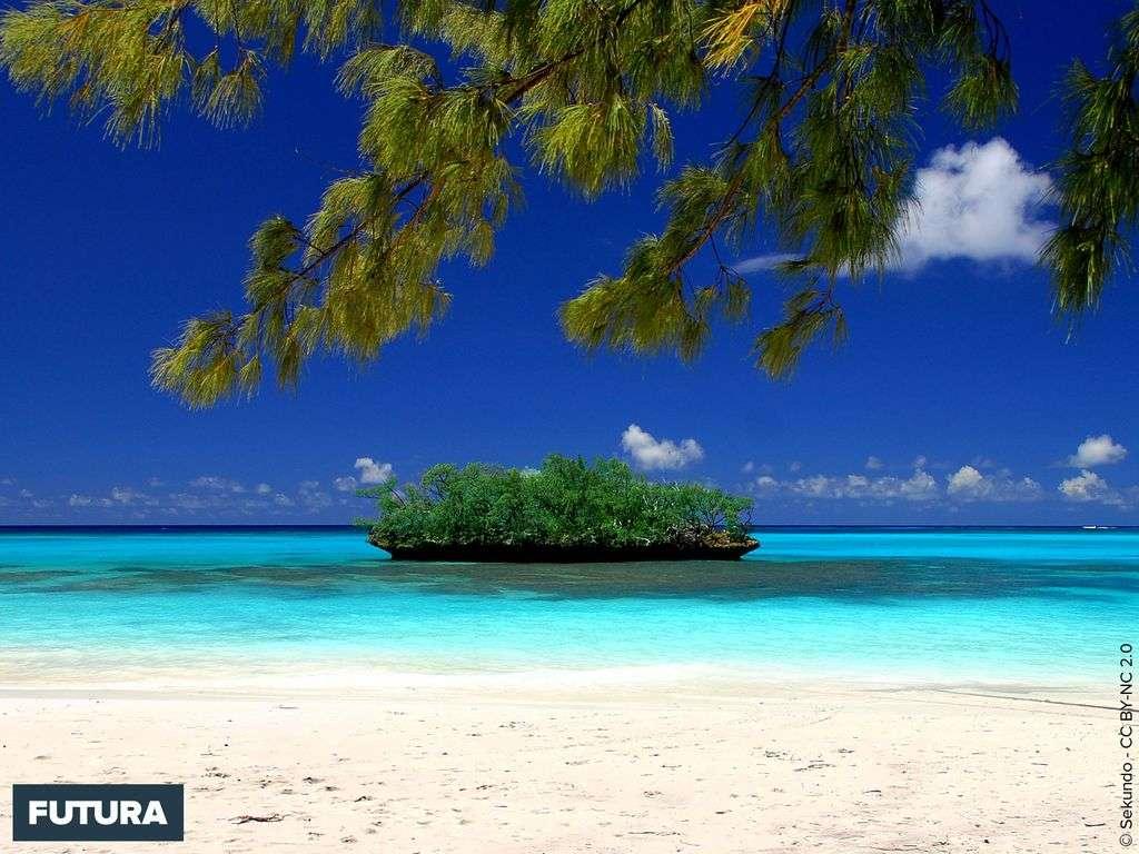 Plage de Luengoni, îles Loyautés - Nouvelle-Calédonie