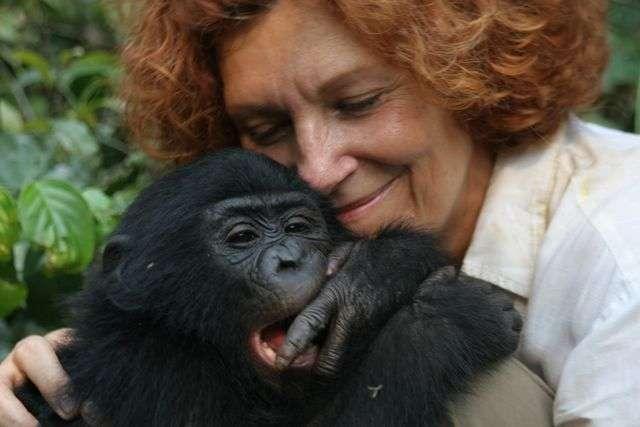 Claudine André et un jeune bonobo. © DP