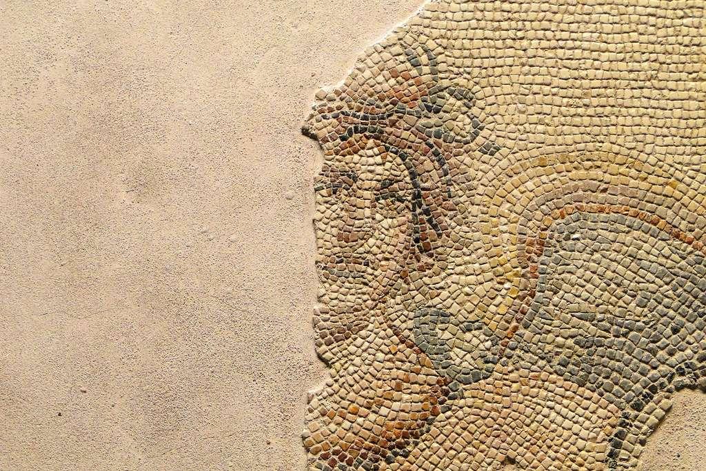 Détail d'une mosaïque de Zeugma. © Adam Jones, Wikimedia commons, CC 3.0
