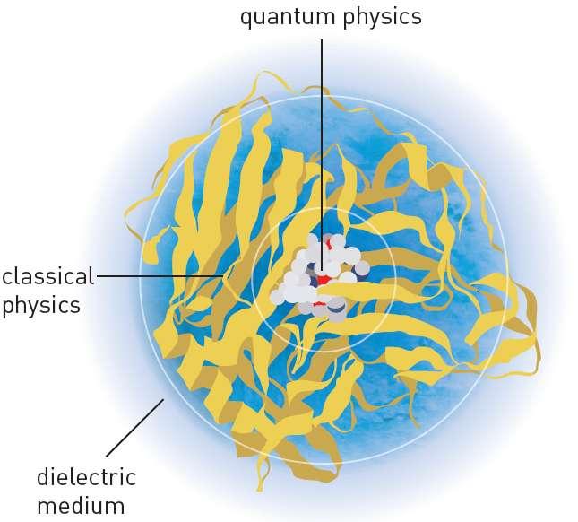 Dans la méthode de modélisation développée par les lauréats 2013 du prix Nobel de chimie, on utilise la physique quantique (quantum physics) pour décrire le lieu des réactions chimiques, tandis que la physique classique (classical physics) est plus adaptée pour décrire la périphérie. Au-delà, les charges électriques ne sont pas susceptibles de se déplacer de manière macroscopique : c'est le milieu diélectrique (dielectric medium). © Nobel Media AB