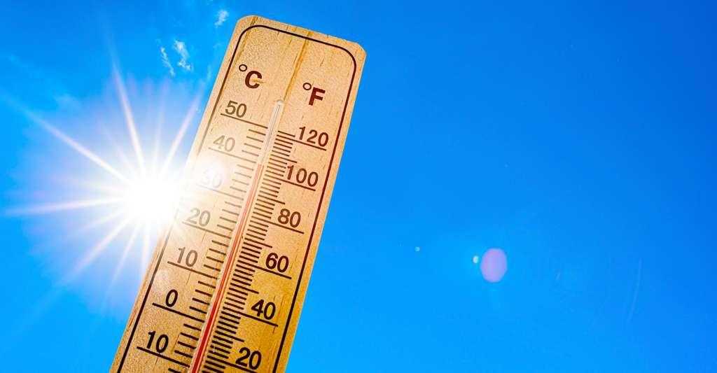 Les chercheurs de l'université de Colombie-Britannique (UBC, Canada) ont lié les températures enregistrées sur une région au nombre de décès déclaré. Sans chercher à identifier les causes exactes de ces décès. Une méthode qui, selon eux, donne des résultats plus proches de la réalité lorsqu'il s'agit d'estimer l'effet de la chaleur sur la mortalité. © John Smith, Adobe Stock