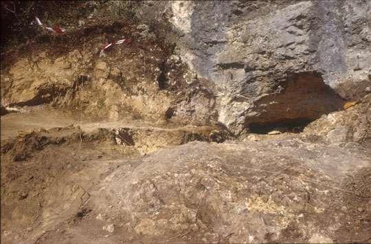 Photo 2b : même vue après terrassement et arrachage des arbres. L'entrée actuelle de la cavité est cette fois bien visible. On voit que le sédiment atteint presque le plafond de la grotte. Au premier plan, l'ancienne paroi de la partie proximale de la grotte était enterrée sous la terre. © François Marchal Reproduction et utilisation interdites