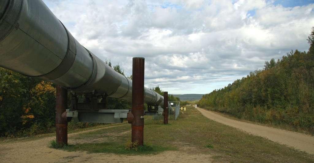 La demande en gaz s'est révélée particulièrement forte, tirée par les États-Unis et la Chine. © 12019, Pixabay, CC0 Creative Commons