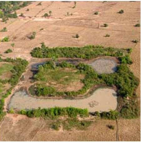Les traces d'un village serré autour d'un temple. Image fournie par les Pnas