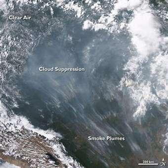 """Des panaches de fumée peuvent être de redoutables """"tueurs de nuage"""", lorsque leurs particules absorbent les rayons du Soleil En témoigne cette image du satellite AQUA - prise en 2005 dans l'ouest du Brésil - qui a pris ce nuage de fumée la main dans le sac (Crédits : NASA)"""