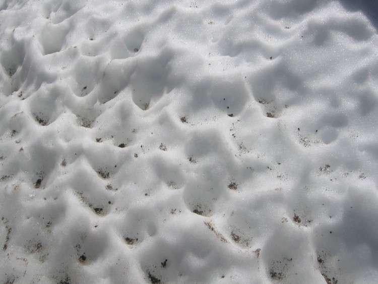Les cryoconites (les trous coniques) se forment localement autour d'une particule au fort pouvoir radiatif. On en observe régulièrement sur les glaciers. L'albédo de la particule diminue localement l'albédo du glacier et la glace se met à fondre autour de la particule. © Curd W., Wikipédia, cc by sa 2.0