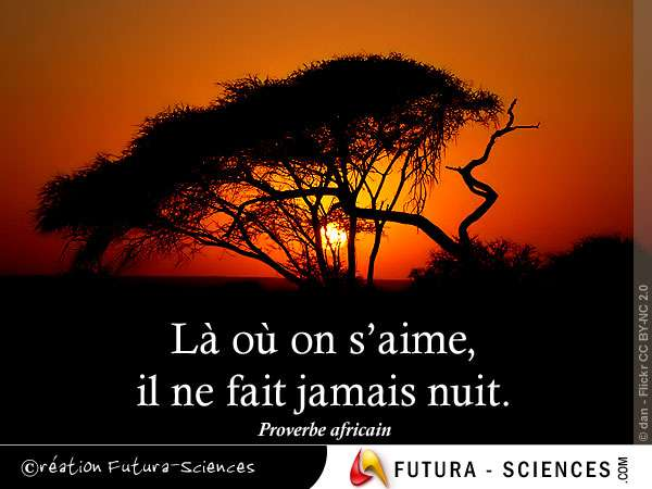 Amour proverbe africain