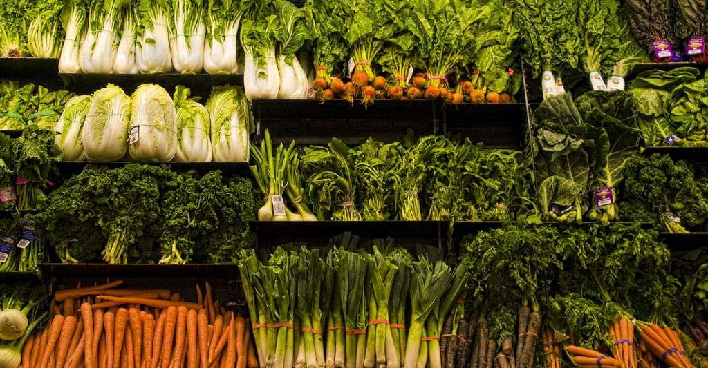 Étal de légumes variés.© Veggies - CC BY 2.0