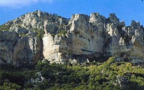 Falaises de la vallée de la Jonte (Lozére) Site « historique » de la première réintroduction réussie du vautour fauve. © Michel Mouze - Reproduction et utilisation interdites.