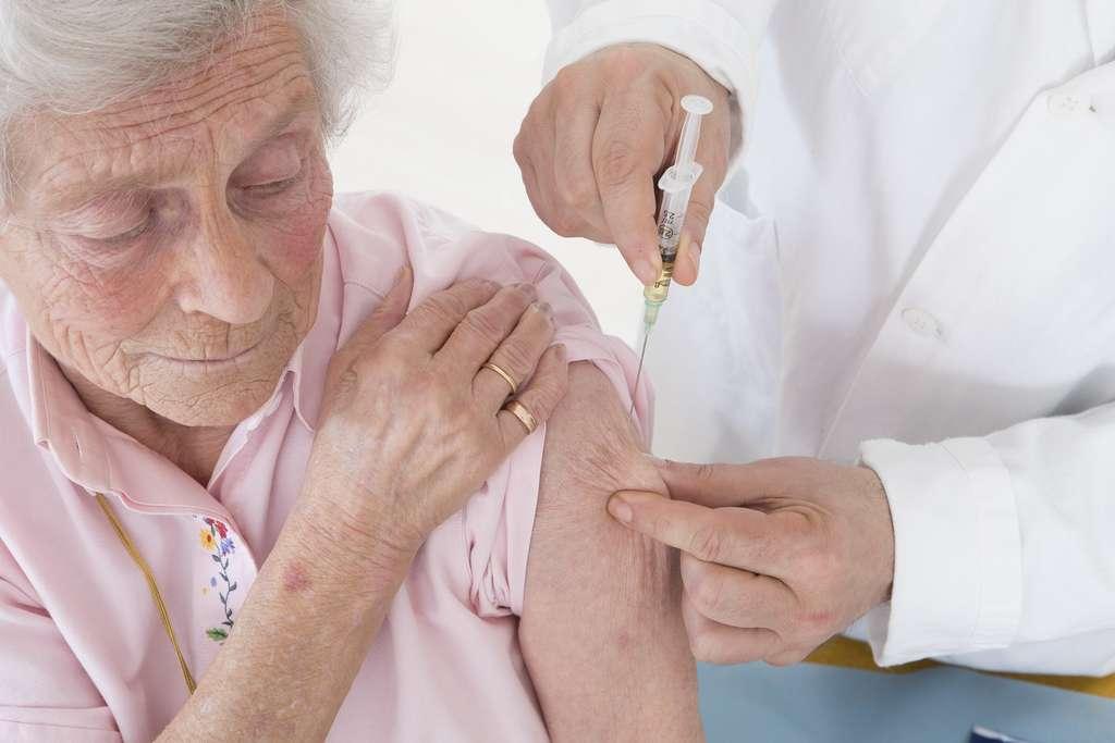Depuis mars seulement, la composition du vaccin pour cet hiver est connue. Il commence tout juste à être administré. © JPC-PROD, Adobe Stock