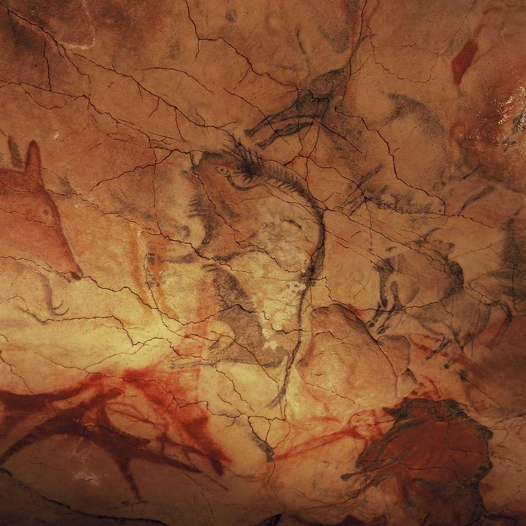 Bisons et biches peints dans la grotte d'Altamira, située au nord de l'Espagne, à quelques kilomètres de Santander. © Yvon Fruneau, Unesco Photobank