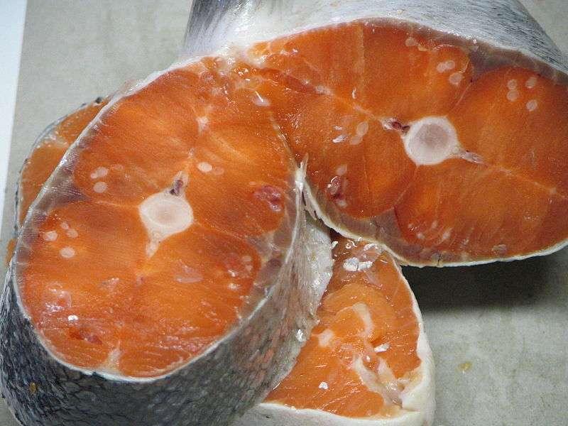 Le saumon atlantique d'élevage ne contiendrait pas des doses élevées du pesticide diflubenzuron. © Flying Penguin, Wikimedia, domaine public