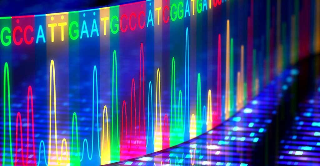 Séquencage de l'ADN. © Ktsdesign, Fotolia